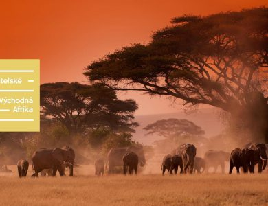 Afrika – láska na prvé nadýchnutie